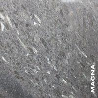 Labrador Fossil
